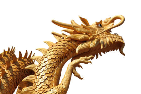 chinese zodiac: golden dragon