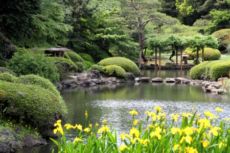 ponds: Beautiful japanese green park in early summer