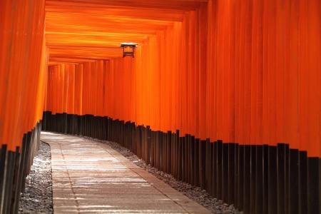Torii gate tunnel in Kyoto, Japan