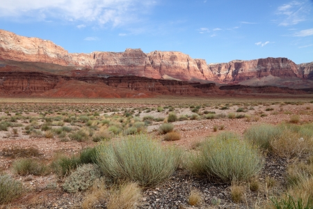 Desert landscape  Vermillion Cliffs  photo