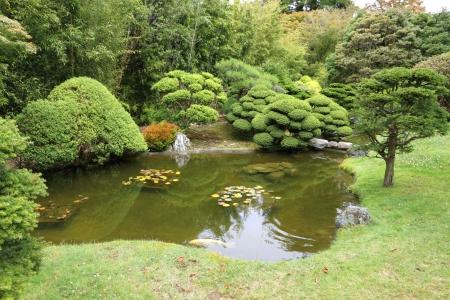 Japanese garden Stock Photo - 18539336
