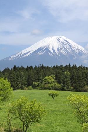 Mount Fuji, Japan Stok Fotoğraf - 19628828