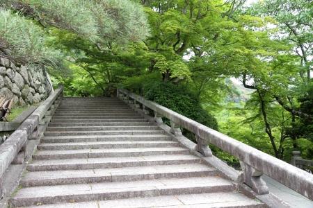 old stone stairs Stok Fotoğraf