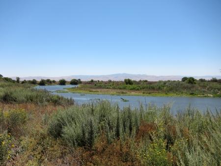 san joaquin valley: San Joaquin River in Central Valley, California Stock Photo