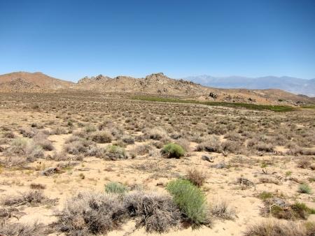 barrenness: Desert landscape
