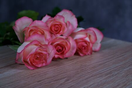 Dolce Vita Rose auf Holz mit grauem Hintergrund Standard-Bild