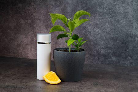 Orange tree, orange slice and white cosmetic bottle on grey table