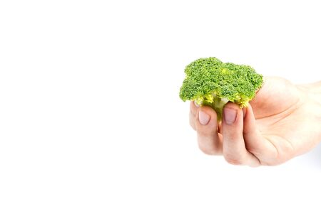 Broccoli in hand isolated on white background with copy space