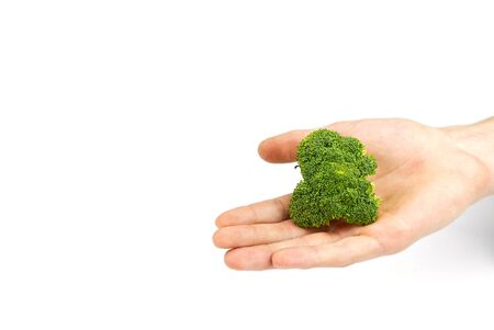 Broccoli in hand isolated on white background with copy space Stockfoto