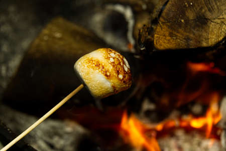 cooking marshmallow on wooden stick over fire.