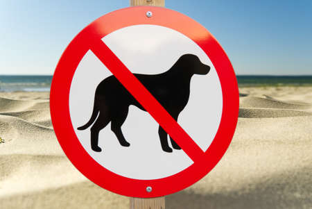 No dog sign on a sandy beach. no pets allowed sign to swimm asign summer beach. Фото со стока