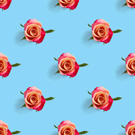 rosebud seamless pattern. head of rose bloom isolated on blue pattern, pop art Фото со стока