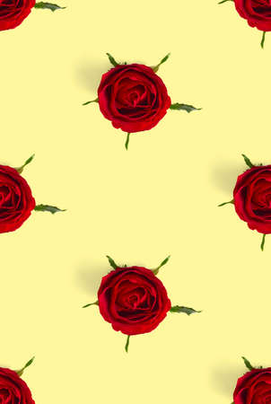 rosebud seamless pattern. head of rose bloom isolated on yellow pattern, pop art