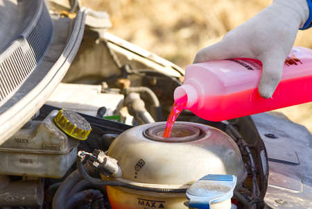 Pouring coolant Service of cars. Pouring antifreeze. Mechanic fills the coolant G12 to tank in the engine Фото со стока