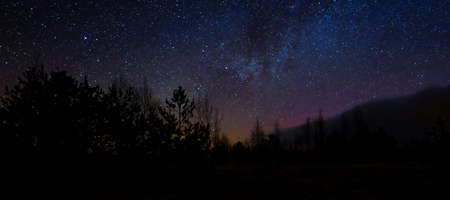 Beautiful night sky colors. Colorful night sky and trees. night scene in swamp under sky of stars Banque d'images