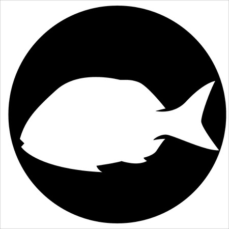 Vector  icons and illustrations fish - Vector