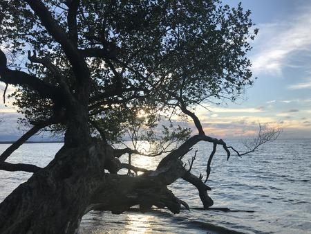 Sunset in Beach Nabire Papua Indonesia Stock Photo