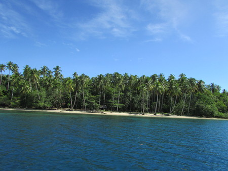Beach View in Nusi Island Nabire Papua Indonesia 免版税图像