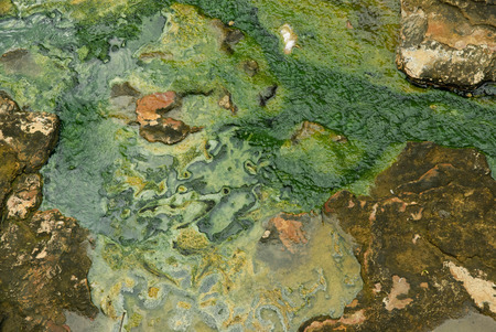 spring water: Stone eroded by hot mineral spring water