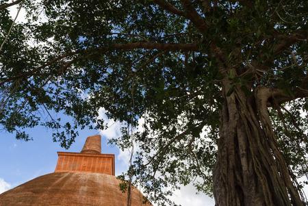 dagoba: Abayagiri dagoba Stock Photo