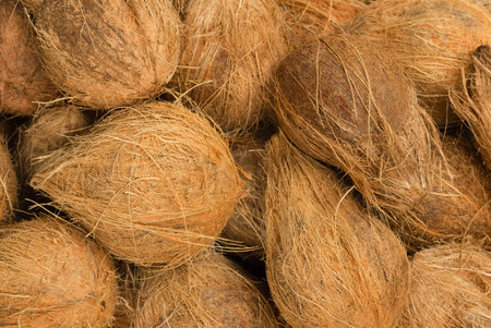 heap: Heap of coconuts Stock Photo