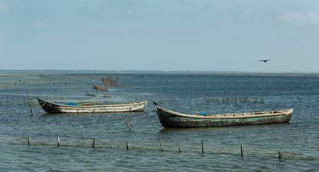 shrimp boat: Prawn fishing boats, Sri Lanka Stock Photo