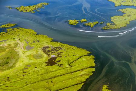 wetland: Wetlands near JFK Airport, New York, USA