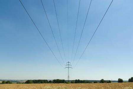 powerlines: Powerlines in a wheat field