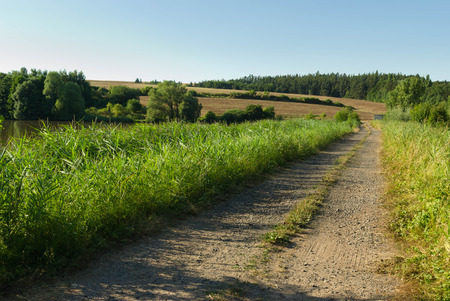 Dirt road in the countryside