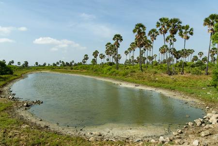 smal: Smal natural tropical tear-shaped pond