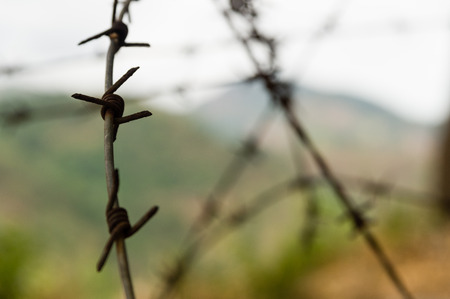 guerilla warfare: Closeup of barbed wire in a hilly landscape