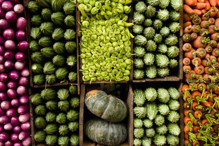organised group: Several varieties of tropical vegetables neatly arranged for sale