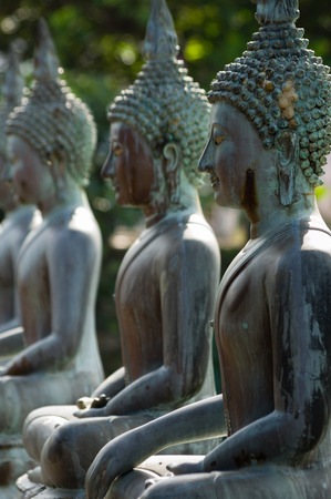 buddha sri lanka: Row of Buddha statues at Ganagarama temple, Sri Lanka