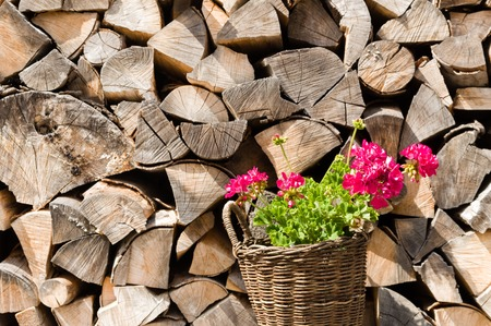 stockpile: Woven basket with pink flowers in front of a stockpile of neatly arranged wood