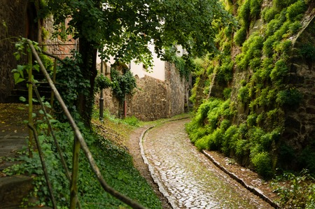 Historical cobble stone laid narrow street in Meissen, Germany 스톡 콘텐츠