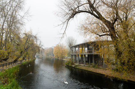 Bydgoscz Canal with swans in autumn lined with trees shedding leaves Imagens