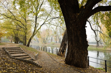 Cobblestone footpath along a canal in autumn lined with colourful trees shedding leaves
