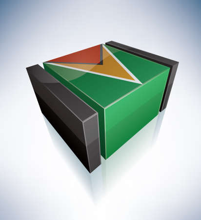 3D: Co-operative Republic of Guyana Stock Vector - 11341437
