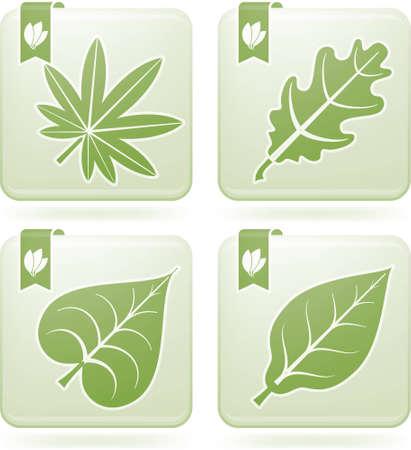 olivine: Multiple shape leafs