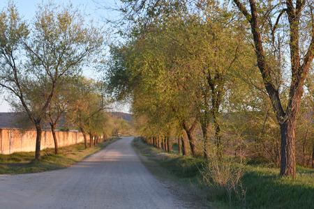 Road tothe village