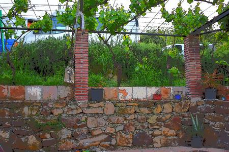 Wild garden with stone columns and tiles Stock Photo