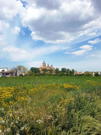 Behind a flower field you can see the village church Stock Photo - 85404383