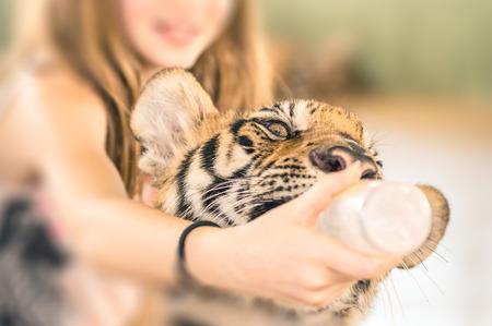 tigre cachorro: Chica joven que introduce a un tigre de bebé con la botella de plástico en el zoológico Foto de archivo
