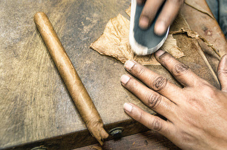 Real production of an handmade Cigar - Little Havana photo