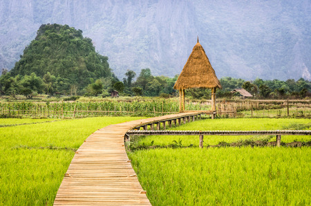 rule of thirds: Rice Paddy Field in Vang Vieng - Laos PDR - Walkway to the Hut Stock Photo
