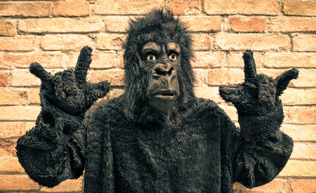 Funny fake gorilla with rock and roll hand gesture - Hipster concept of anthropomorphic evolution of modern monkey Stock Photo