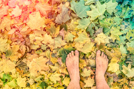 feet naked: Naked barefoot on leaves park ground - Freedom wanderlust  lifestyle and emotional feelings - Bare human feet on autumn psychedelic background with marsala vintage halo - Retro nostalgic filtered look Stock Photo