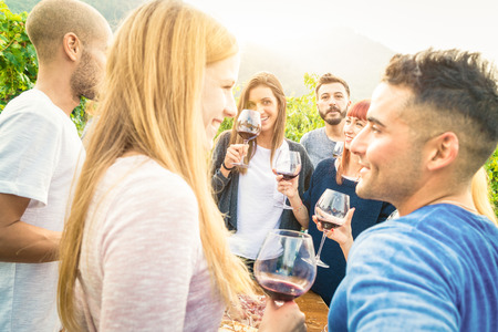 Happy friends having fun and drinking wine - Friendship concept with young people enjoying harvest time together at farmhouse vineyard countryside - Bright desat  filter with focus on background faces Standard-Bild