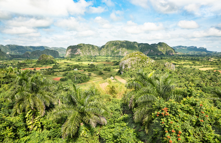 Panoramic postcard view of luxuriant vegetation in the famous valley of Vinales in west side of Cuba - Travel exploration concept with world heritage site in caribbean latin america 스톡 콘텐츠