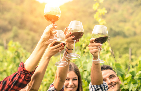 Friends hands toasting red wine glass and having fun cheering at winetasting experience - Young people enjoying harvest time together at farmhouse vineyard countryside - Youth and friendship concept 写真素材